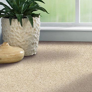 Shaw Carpet Bellera Collection